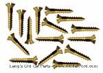 Model T Firewall trim mounting screw set, brass. For 2 piece firewall. 15 pieces. - 3634TRE